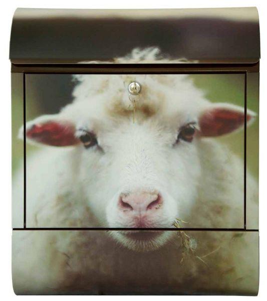 Briefkasten Schaf