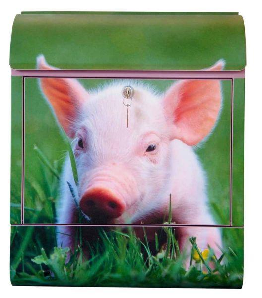 Briefkasten Schwein