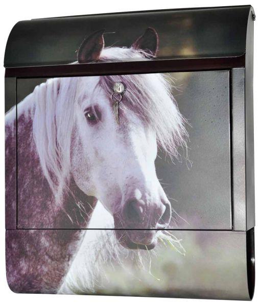 Briefkasten Pferd