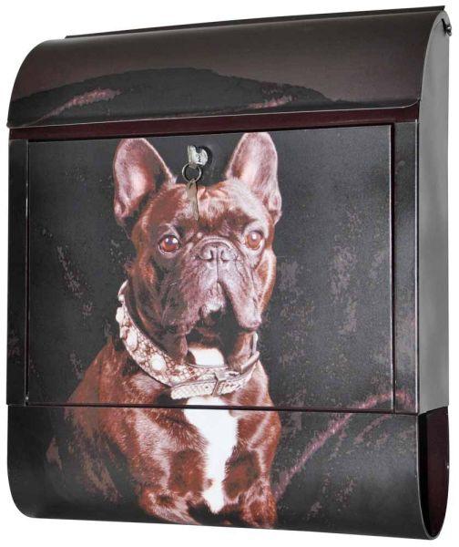 Briefkasten Französische Bulldogge