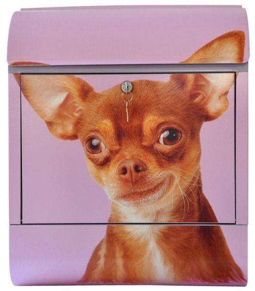 Briefkasten Chihuahua