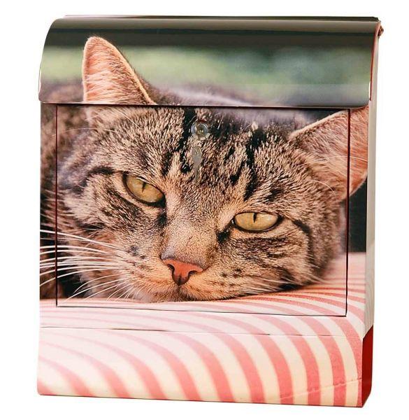 Briefkasten Katze